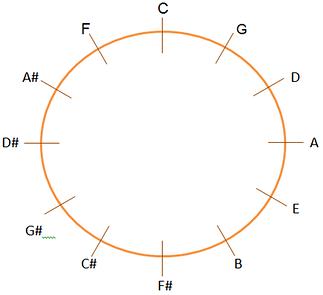 ciclo de quintas
